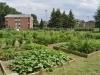jardin-commun